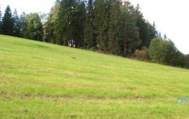 Slunný stavební pozemek v obci Horní Vltavice u Prachatic